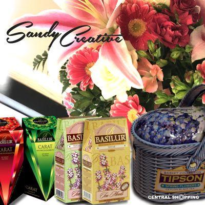 sandycreative3ED5ABD9-D351-15EA-E6A1-0FBB9621D708.jpg